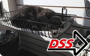 Direct Safety's Sleepy Smokey